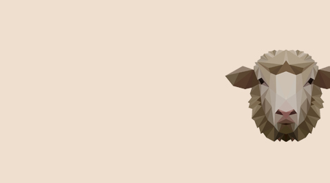 Minden ami bárány