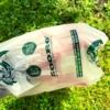 komposztálható kakizacskó