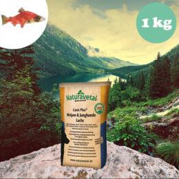 Naturavetal Kölyök és Junior Lazac monoprotein száraztáp 1 kg - hidegen sajtolt, allergiás kutyáknak