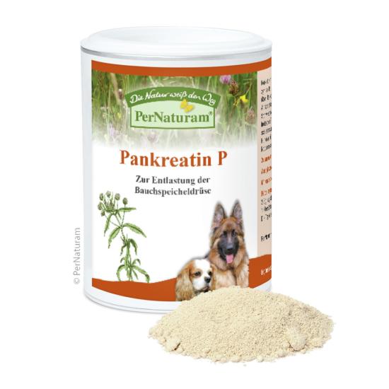 PerNaturam Pankreatin P 100 g