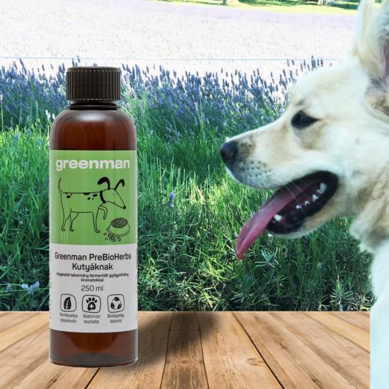 Természetes probiotikum kutyáknak