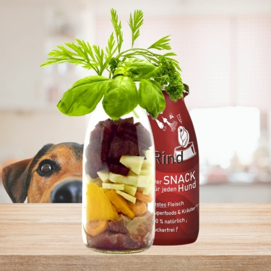 smoothie kutyáknak LickiMat-hez