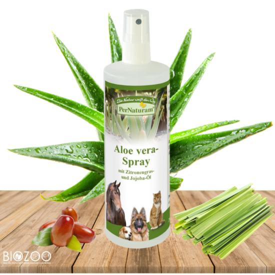 aloe vera spray kutyáknak