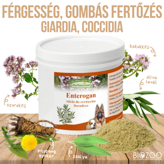 PerNaturam Enterogan 100 g